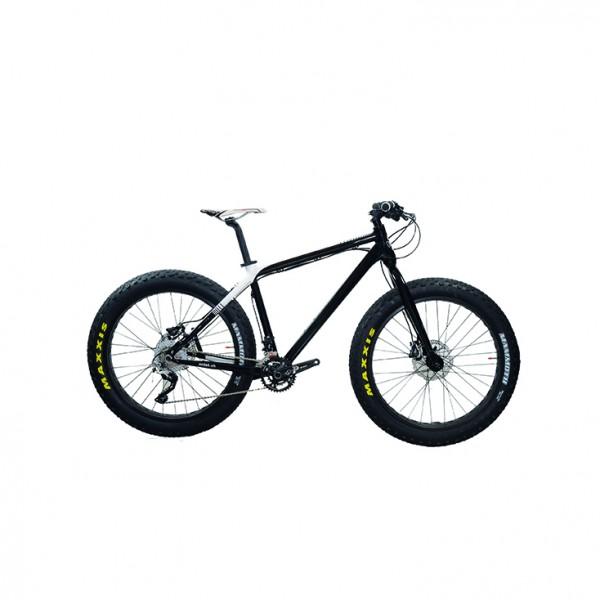 100.022_Fat_Bike